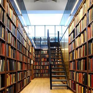 Библиотеки Невельска